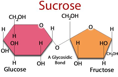 fructose s what is fructose why is high fructose corn syrup bad