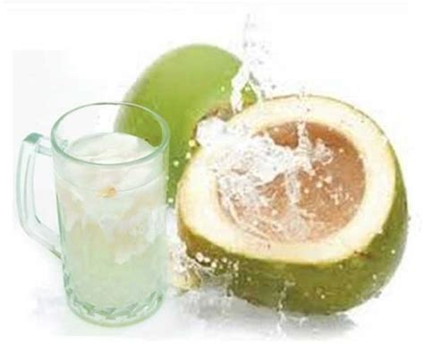 kelapa hijau kasiat dan cara penggunaannya problem khasiat air kelapa muda untuk pria