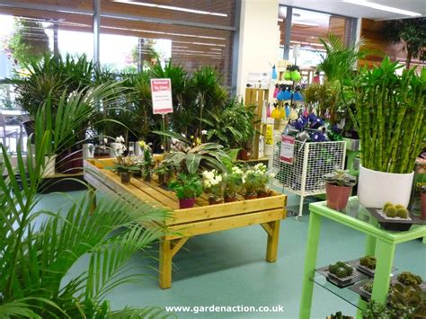 house plants uk for sale we review the cafe at dobbies shepton mallet