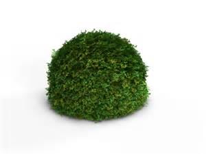 realistic shrub bush set 3d model max obj cgtrader com