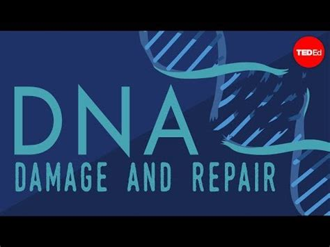 Rna Power 2 5g 5g iot health what happens when your dna is damaged