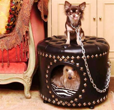 the dog house little rock 26 brilliant dog houses that will change your pup s life