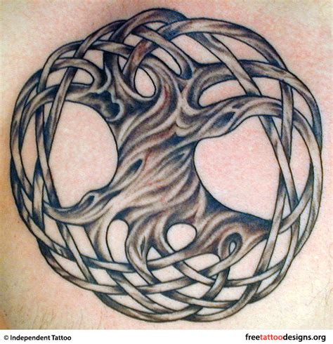 Tree Tattoos Palm Tree Of Life Pine Tree Tattoo Celtic Tree Tattoos Designs 3
