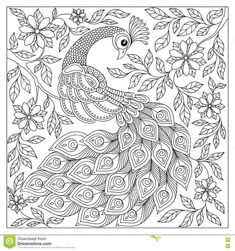 vintage patterns coloring pages peacock adult antistress coloring page black and white