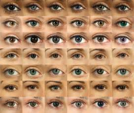 eye colors list eye can see you catcher stories