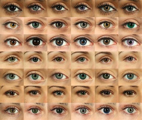 all eye colors eye can see you catcher stories