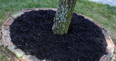 condo blues how to make a brick tree ring on uneven ground