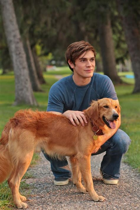dogs purpose riverdale s own archie kj apa shines in the big screen with a s purpose