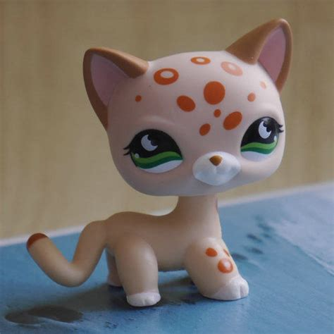 littlest pet shop cat collection short hair cats youtube lps collection littlest pet shop rainsdrop 852 short hair