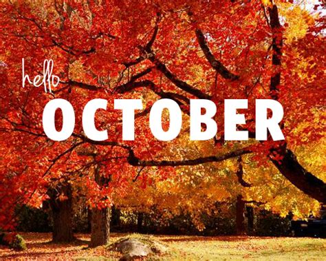 october is my favorite color october is my favorite color runs for food