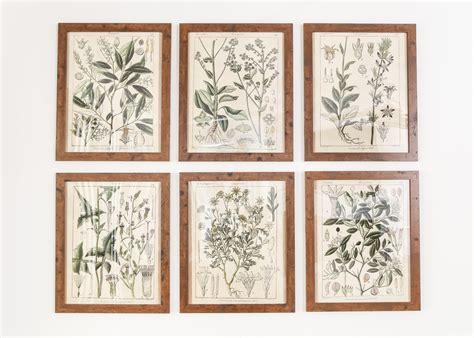 hanging prints botany printable art and a wall decor hanging trick