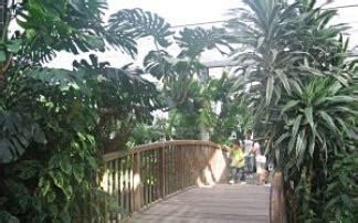 botanischer garten kindergeburtstag der botanische garten duisburg kaiserberg mamilade