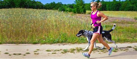 wag walking price 5k ruff ruff run 1 mile wag walk homeward bound pets