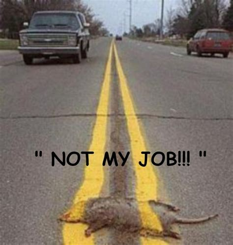 Not My Job Meme - the winner of it s not my job photo s photos texas