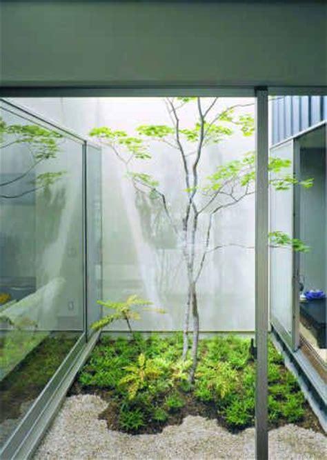 Garden Of Atrium Best 25 Atrium Garden Ideas On Atrium Indoor