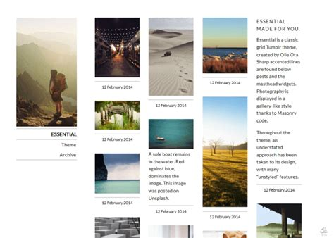 tumblr themes olle essential