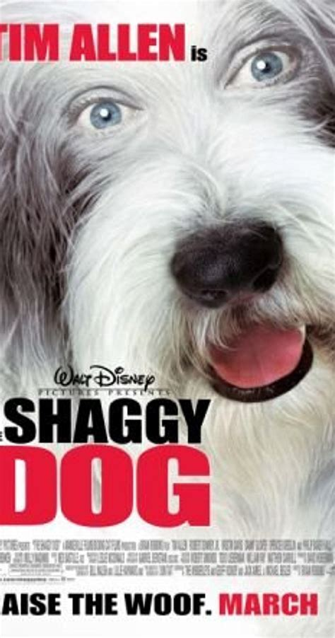 the shaggy cast s top dogs 2006 tv tv