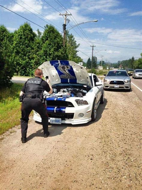 Ford Mustang Shelby GT 500 Pulled Over, Police Officer