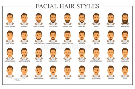 type 3hair styles facial hair types stock vector illustration of male