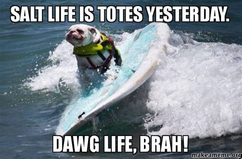 salt life  totes yesterday dawg life brah   meme