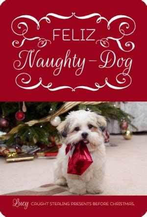 holiday dog quotes quotesgram