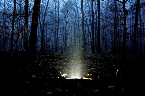 Ghost Lights by Call Of The Otherworld Ghost Lights The Forest