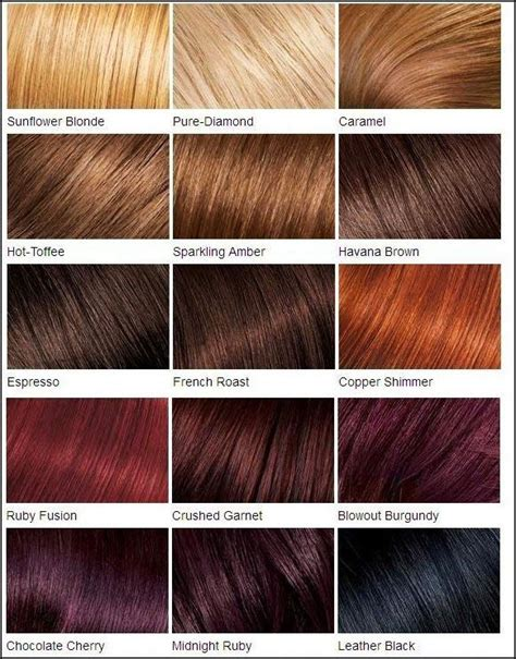 Different Types Of Brown Hair by Different Shades Of Brown Hair Color Brown Hairs