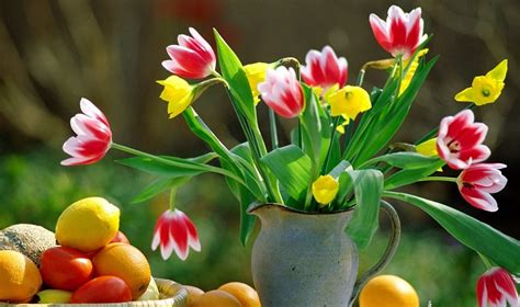 imagenes de rosas en jarrones el jarr 243 n perfecto para un ramo de flores