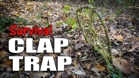 survival trapping pheasant and ground bird traps books survival clap trap bird trap
