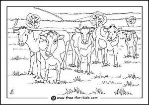 Colouring Page Of Cows In A Field  Size 07MB sketch template