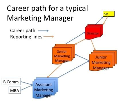 Career Path After Mba Marketing by What Would Be A Career Path For Marketing Quora