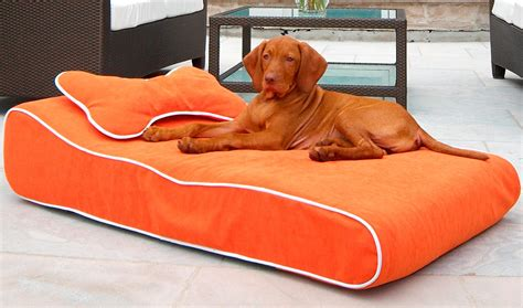play dog beds play dog beds dog bed off the floor dog beds thewhitestreakcom dog dog beds and costumes