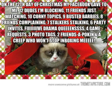 the christmas blog 2017 this christmas grumpy cat and