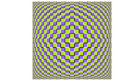 ilusiones opticas uno para todo ilusiones 243 pticas de todo tipo refugio antia 233 reo