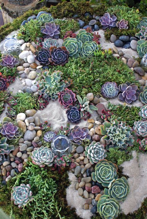 succulent rock garden succulent rock garden garden cake table
