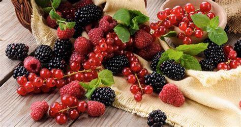 alimenti per attivare il metabolismo gli alimenti migliorano il metabolismo medimagazine