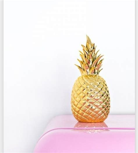 1000 images about pineapples tropics on
