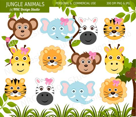 safari animals clip clipart jungle animal pencil and in color