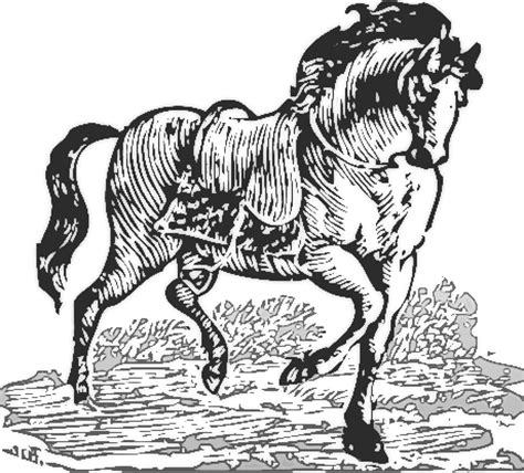 medieval horse coloring page clydesdale clipart medieval horse pencil and in color
