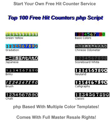 best website counter top 100 free hit counters php website script php