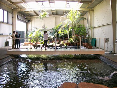 Indoor Ponds by 40 000 Gallon Indoor Pond