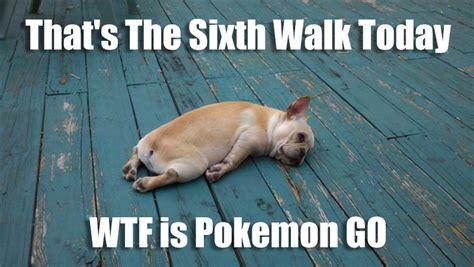 Today S Funny Memes - pokemon go funny meme funny memes