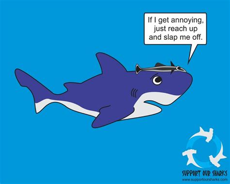 Support Remora The Annoying Remora Shark By Support Our Sharks