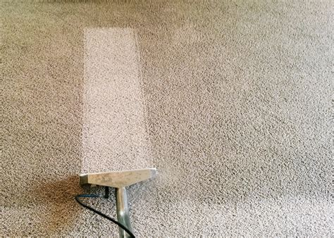 how to clean out of rug carpet cleaning home carpet care woodstock ga