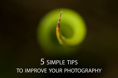 8 Tips On Improving Your Photography Skills by 5 Simple Tips To Improve Your Photography Discover