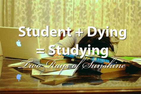 day of school quotes tired student dying studying laptop image 752644 on favim