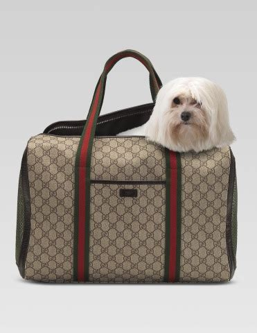 Guess Fashion 8w putting on the with the 10 hautiest designer pet carriers