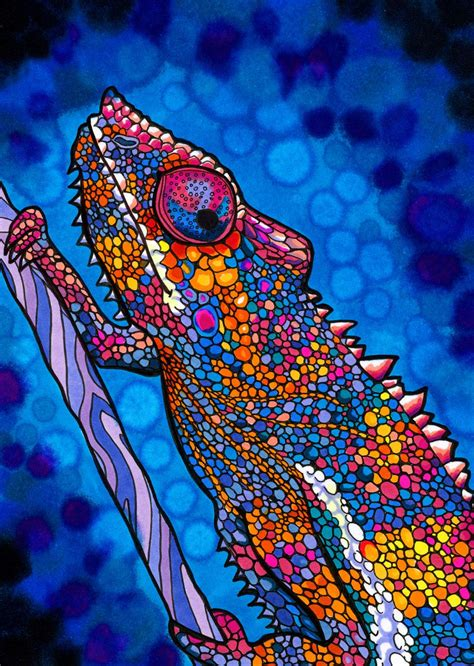 colorful chameleon colorful chameleon drawing www pixshark images