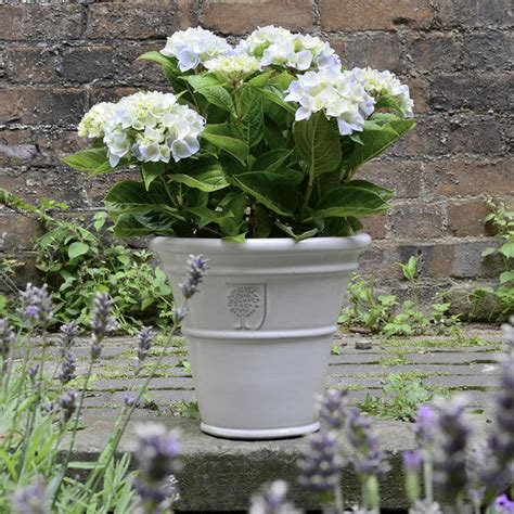 White Outdoor Plant Pots Buy White Glazed Planters The Worm That Turned