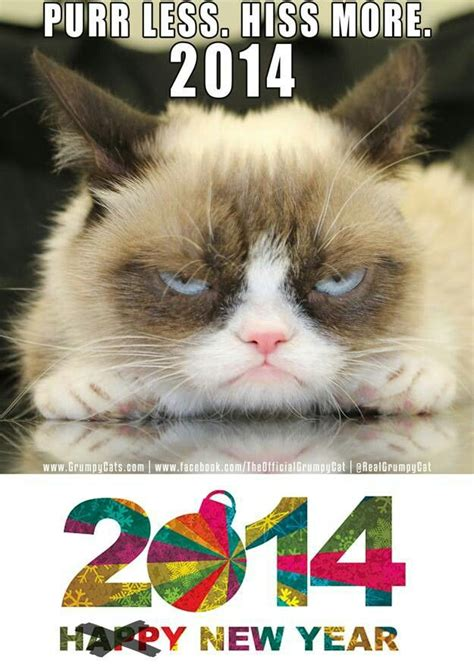 grumpy cat new year grumpy cat happy new year comedy and lies
